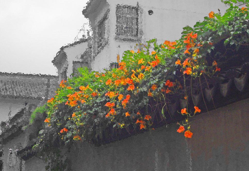 满园春色关不住 一枝红杏出墙来