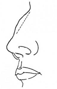 手面相知识 – 淺談鼻樑起节的問題