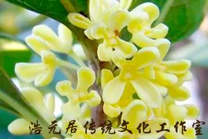 台湾风水大师知识分享,台湾风水大师看宅笔记