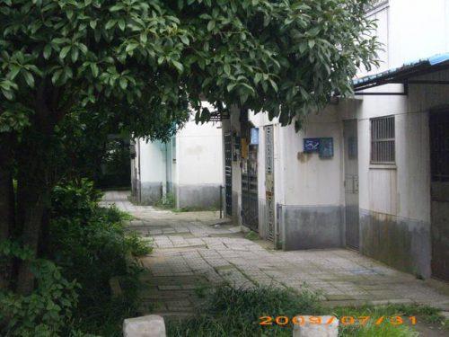 南京风水大师:绿化过度造成气闭不利健康风水